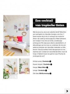 stek artikel HaagseStrandhuisjes 4